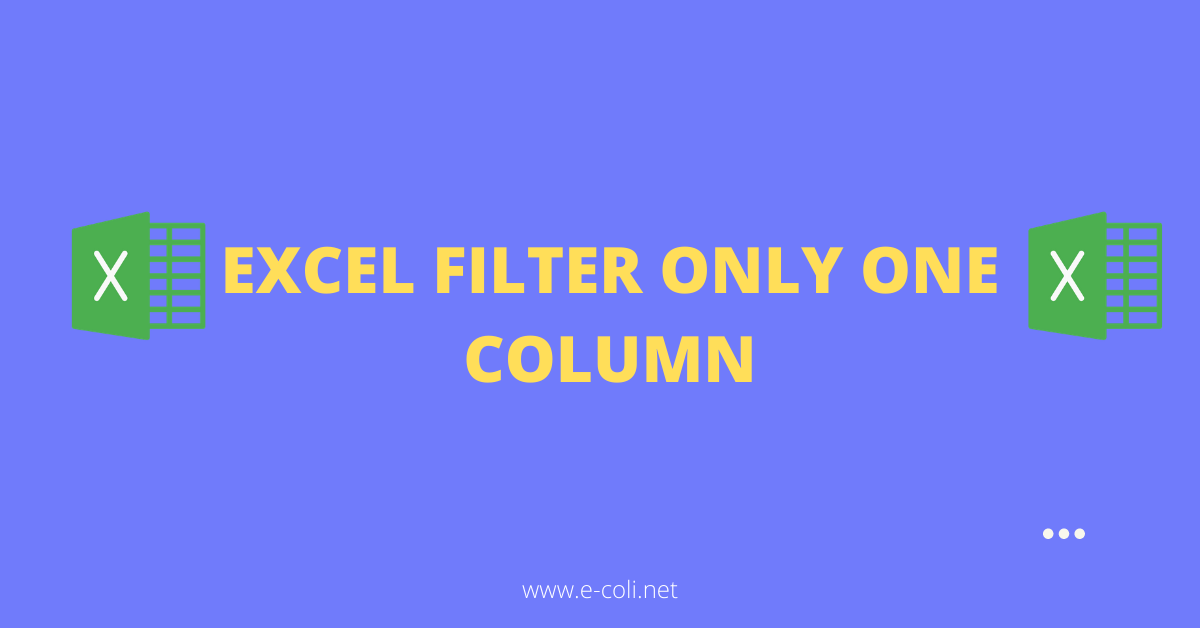 Excel Filter Only One Column